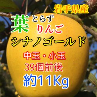 【送料込】葉とらずりんご シナノゴールド 約11kg(フルーツ)