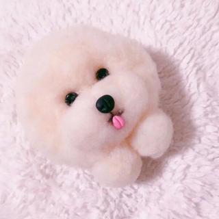 羊毛フェルト ❤︎ 犬ブローチ ビジョンフリーゼ❤️(コサージュ/ブローチ)