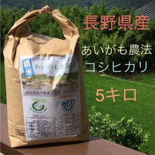 長野県産 あいがも農法 新米コシヒカリ 5キロ