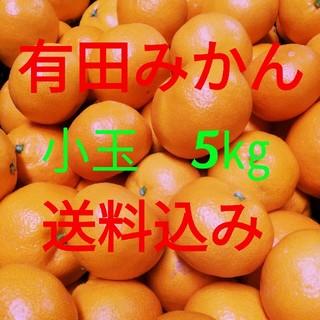 有田みかん🍊小玉🍊5㎏🍊送料込み