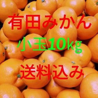 有田みかん🍊小玉🍊10㎏🍊送料込み