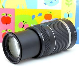 キヤノン(Canon)の☆手ブレ補正付☆超望遠レンズ☆Canon EF-S 55-250mm IS(レンズ(ズーム))