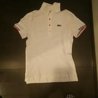 ラコステ(LACOSTE)のLACOSTEポロシャツ(ポロシャツ)