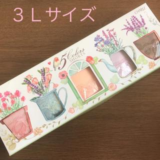 シャルレ(シャルレ)の《新品》シャルレ5色限定ショーツセット♡3Lサイズ♡(ショーツ)
