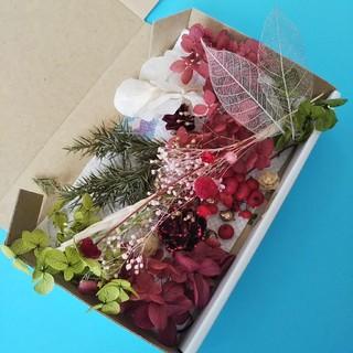 ハーバリウム花材 木の実いっぱいクリスマス(プリザーブドフラワー)