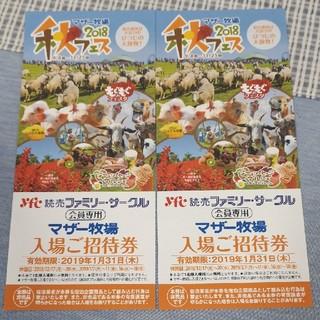 マザー牧場 2枚 入場券(動物園)