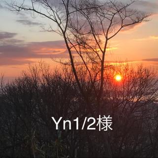 Yn1/2様専用(美容液)