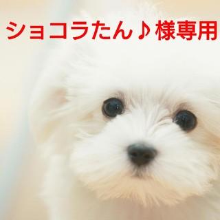ショコラたん♪様専用 犬 服 トレーナー(犬)