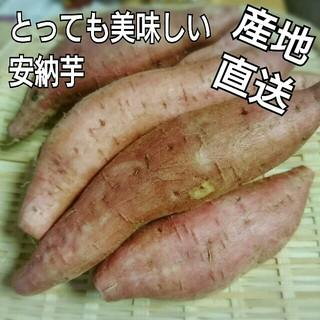 産地直送!農家直送!鹿児島県産 安納芋 約1㎏(野菜)