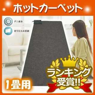 新品★ホットカーペット 1畳 90×180cm TEKNOS(テクノス)(ホットカーペット)