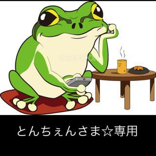 サンリオ(サンリオ)のとんちぇんさま☆専用(ぬいぐるみ)