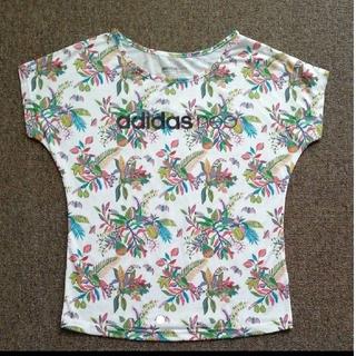アディダス(adidas)のTシャツ アディダスネオ(Tシャツ(半袖/袖なし))