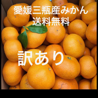 愛媛三瓶産みかん 訳あり  5キロ