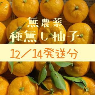 無農薬 種無し柚子 柚子