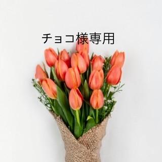 ちょこ様専用ページ(ピアス)