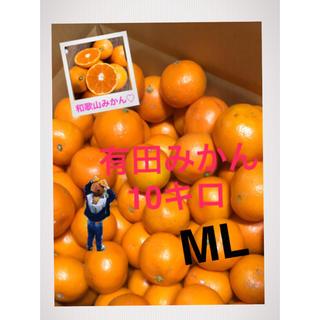 和歌山 有田みかんMLサイズ10キロ 大きめ(フルーツ)