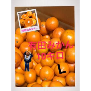 ぽんたろう 様専用和歌山 有田みかんLサイズ10キロ 大きめ!(フルーツ)