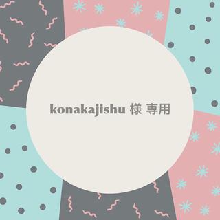 konakajishu 様 専用 ⋈*。゚(その他)