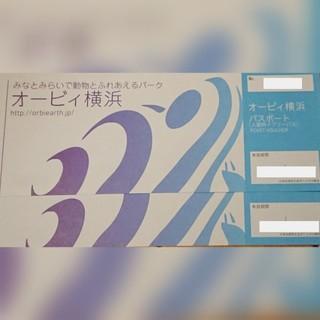 2枚/オービィ横浜 Orbi Yokohama パスポート(入館料+フリーパス)(遊園地/テーマパーク)