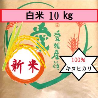 お米 H30 愛媛県産キヌヒカリ 白米 10㎏