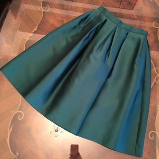 チェスティ(Chesty)の新品 chesty フレアスカート(ひざ丈スカート)