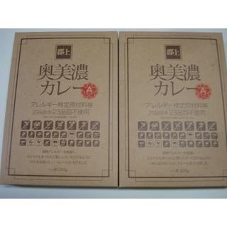 郡上奥美濃カレーA(エース)2ケ(一人前200g×2)・送料無料(その他)