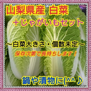 【山梨県産】白菜&じゃがいも(北海こがね)セット(野菜)