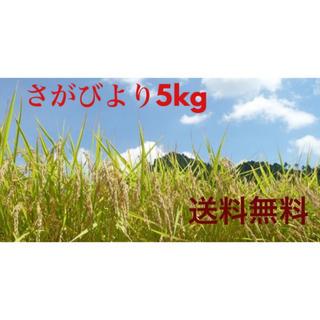 佐賀県産 さがびより5kg  特A!【値下げ!】(米/穀物)