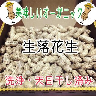 落花生 オーガニック 無農薬 天日干し (野菜)