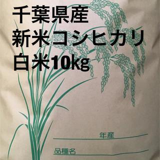 shop様専用コシヒカリ白米10キロ(米/穀物)