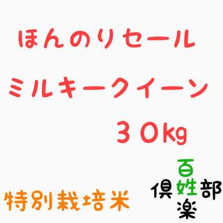 ミルキークイーン 玄米 精米 無洗米(米/穀物)