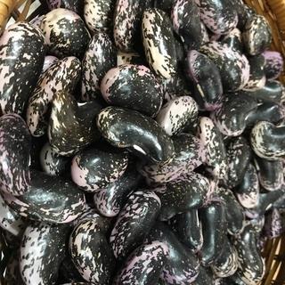 30年 野辺山産 無農薬花豆(規格外商品)500g(野菜)