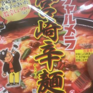 いっちゃん様専用(インスタント食品)