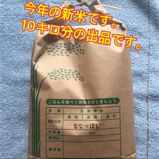新米 ななつぼし 10キロ分  白米 旭川産 10kg(米/穀物)