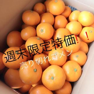 和歌山みかん 10キロ 大特価(フルーツ)