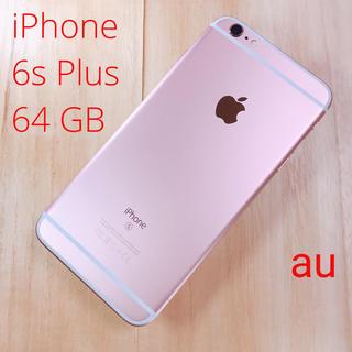 アップル(Apple)のiPhone  6s Plus 64GB  rose gold au(スマートフォン本体)
