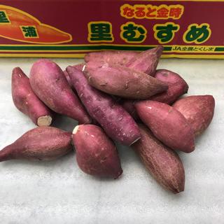 ☆里むすめ☆  徳島産 さつまいも 鳴門金時 ミニサイズ約600g(野菜)