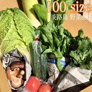 淡路島【きまぐれ】野菜set