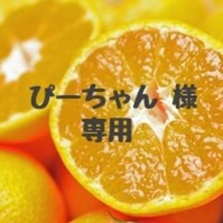 【ぴーちゃん様  専用】大玉‼️完熟早生みかん(フルーツ)