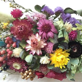ドライフラワー  いろいろ 花材