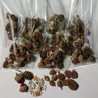 4種類の木の実と白樺のスターチップミニをセット小分け(ドライフラワー)