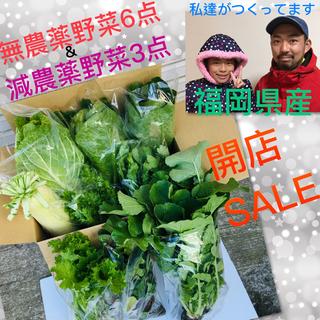 3時間タイムセール♡無農薬野菜➕減農薬ロメインレタス➕減農薬オレンジクイン(野菜)