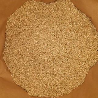 農家直送 新米 玄米20kg送料 精米無料(米/穀物)