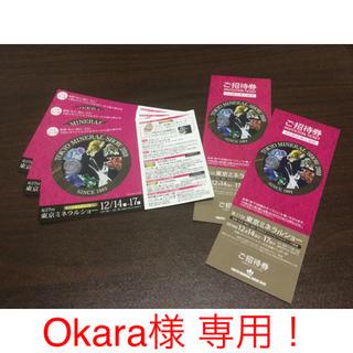 ミネラルショー チケット DM 1枚組(その他)