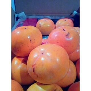 mirai様❗専用出品❗会津みしらず柿 御山産 5kg 3Lサイズ 果物 甘柿(フルーツ)