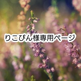 りこぴん様専用ページ(各種パーツ)