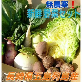 無農薬❗新鮮野菜セット(70サイズ) 長崎県五島列島よりお届け❗(野菜)