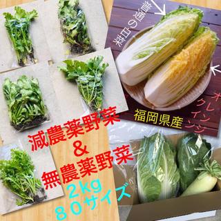 祝オープン♡50%オフ♡3時間セール♡無農薬野菜➕ロメインレタス➕オレンジクイン(野菜)