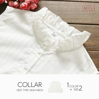 付き襟 ホワイト Lサイズ 最安値(つけ襟)