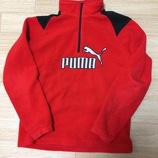 プーマ(PUMA)のPUMA フリーストレーナー(ジャケット/上着)